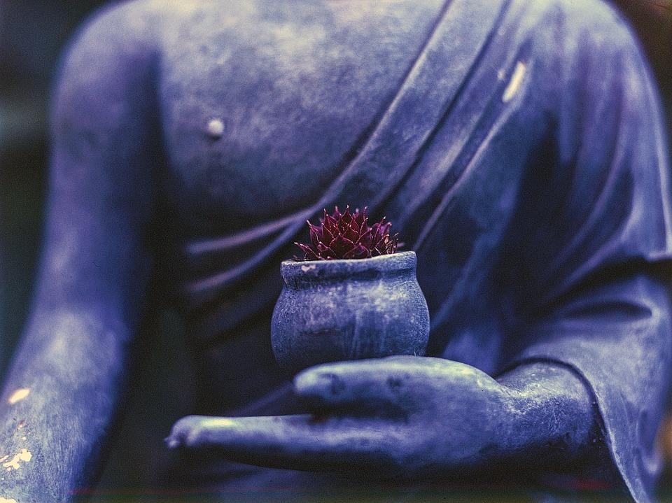 2019_0318153139_buddha-1308478_960_720.jpg