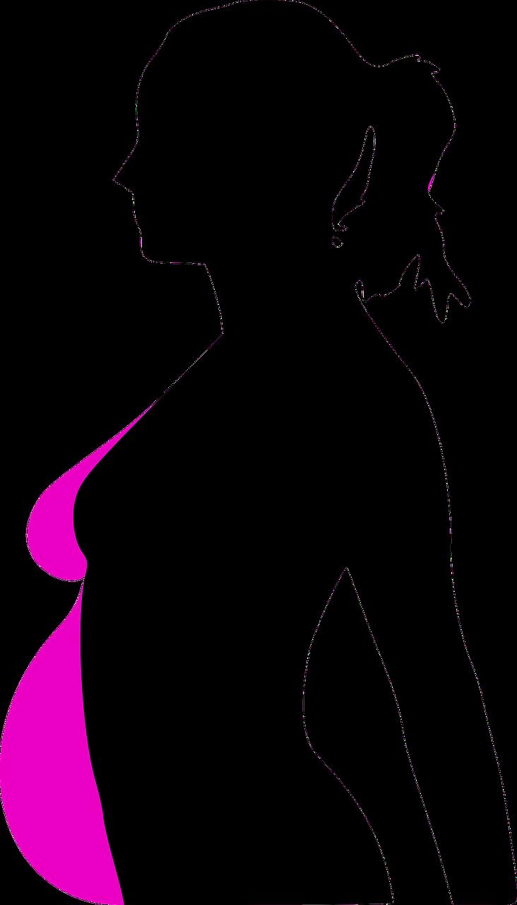 2019_0401093335_pregnancy-31113_1280.png